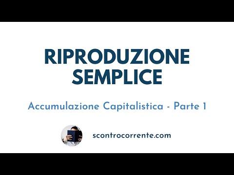 """Riproduzione Semplice - Episodio 9.1 """"Il Capitale"""""""